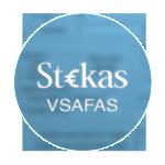 Buhalterines apskaitos programa pagal VSAFAS